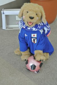 アイドル犬JOHNもワールドカップ応援!